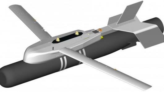 El HAASW, destinado a acercar los torpedos lanzados desde 20.000 pies a la superficie del mar.